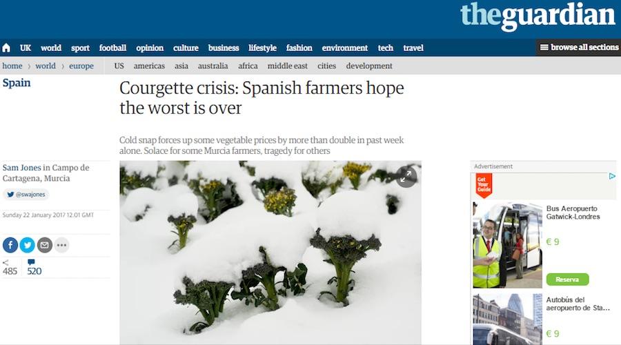 prensa internacional crisis del calabacin